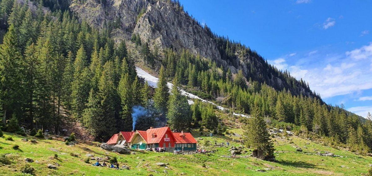 Cabana Valea Sâmbetei