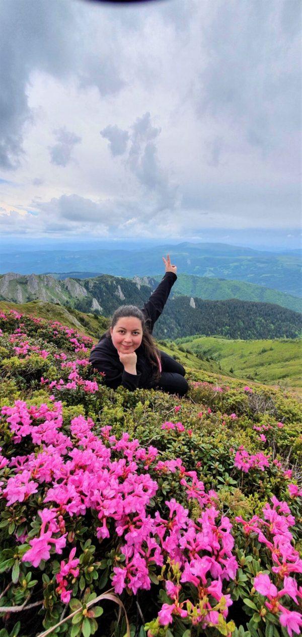 Bujori de munte - Vârful Gropșoarele - Munții Ciucaș