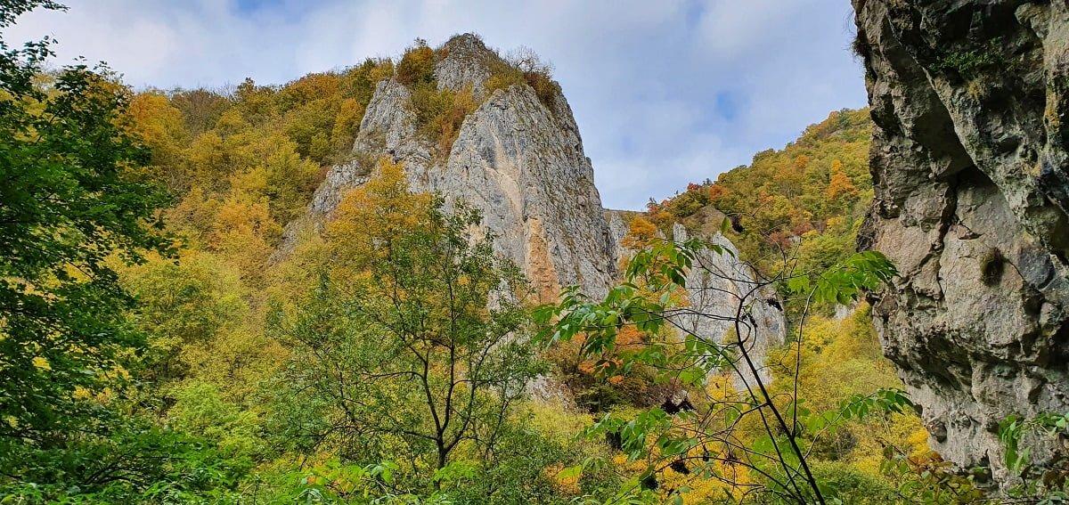 Vedere din Peștera Mare de Merești - Cheile Vârghișului